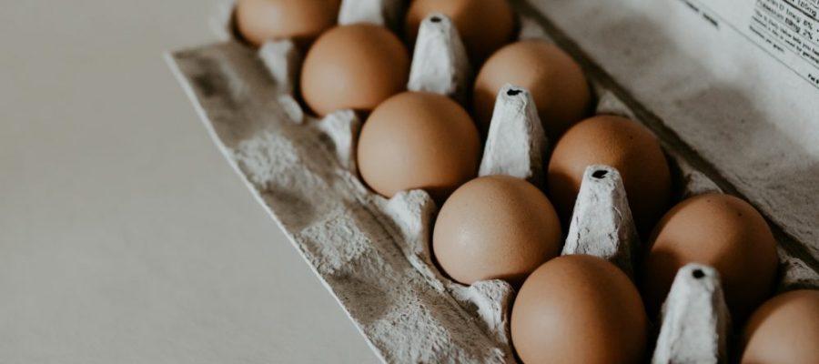 carton d'œufs